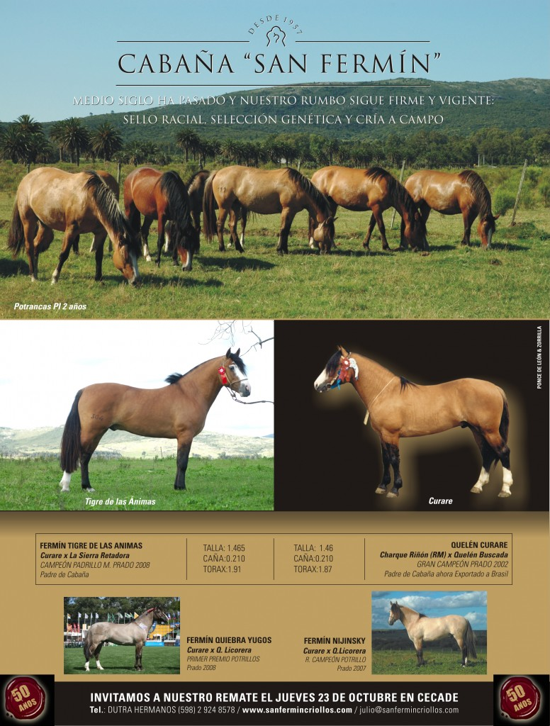 caballos criollos aviso 2008 propaganda rural