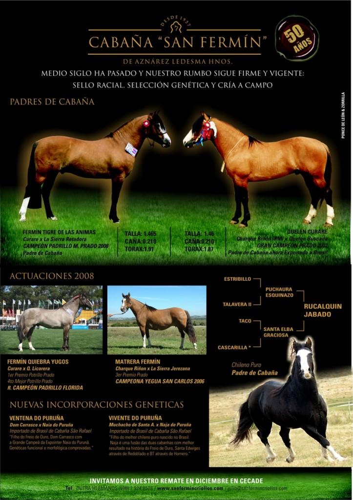 aviso-prado-caballos-criollos-20091