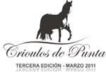 Crioulos de Punta - www.CampoUrbano.com.uy